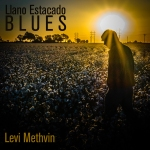 Llano Estacado Blues by Levi Methvin
